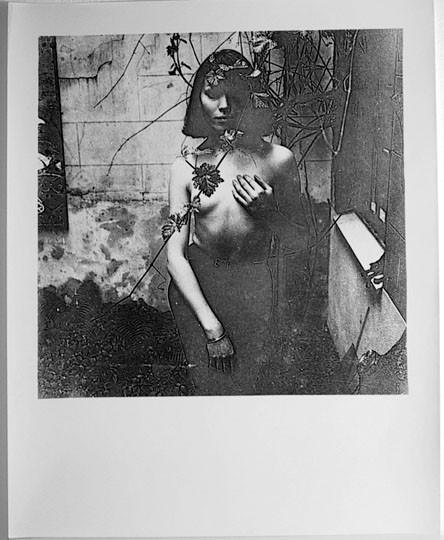 Герберт Тобиас. Изображение № 19.