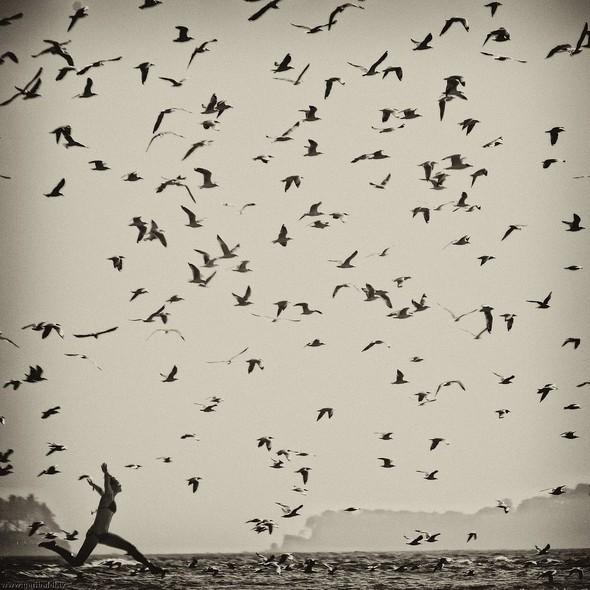 Пронзаясь махом крыльев - non stop. Изображение № 27.