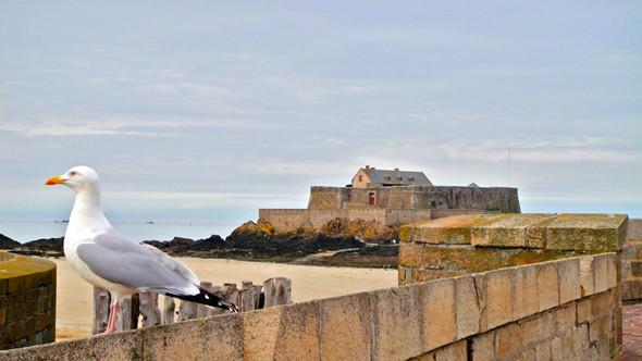 Fort National во время отлива. Изображение № 10.