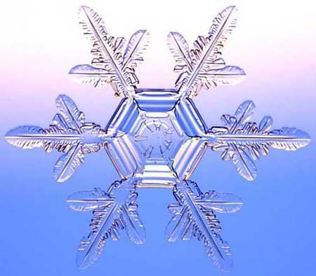 Снежинки – временные произведения искусства. Изображение № 8.