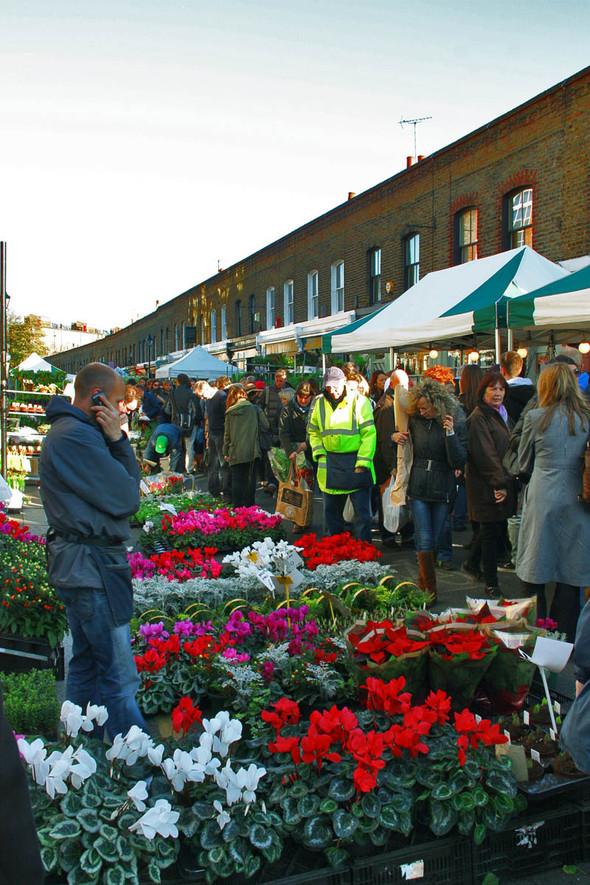 Columbia Road Flower Market/Цветочный рай. Изображение № 3.