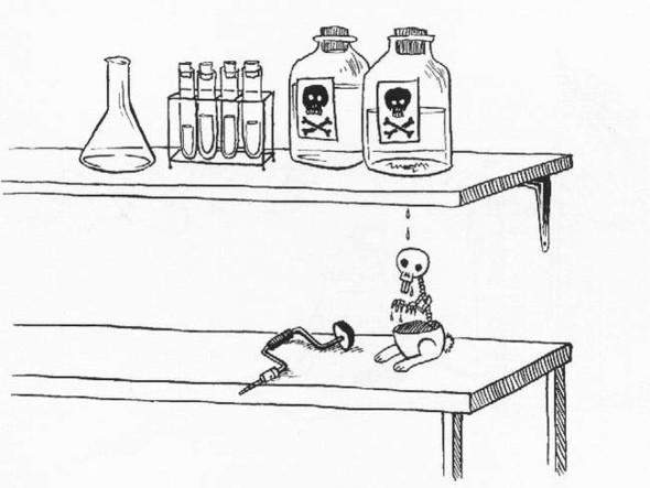 Кролики-самоубийцы(Bunny Suicides). Изображение № 5.