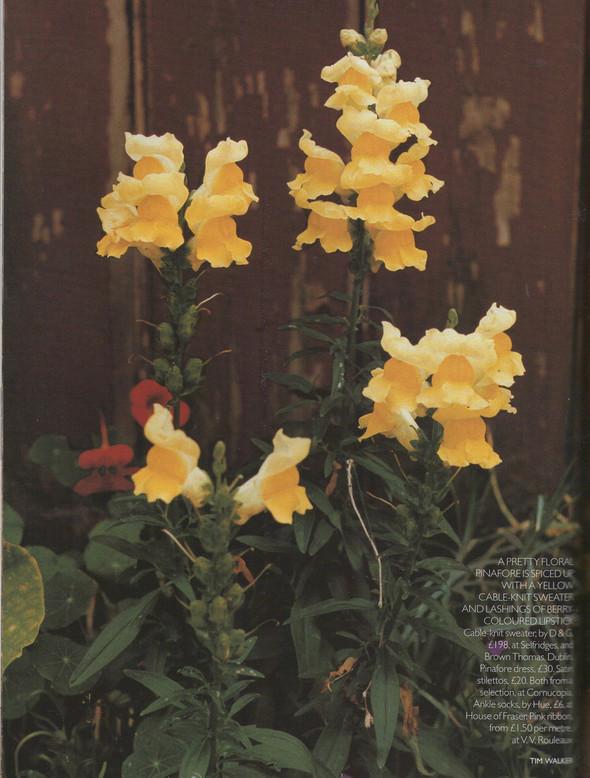 Архивная съёмка: Тим Уокер для Vogue, 1996. Изображение № 5.