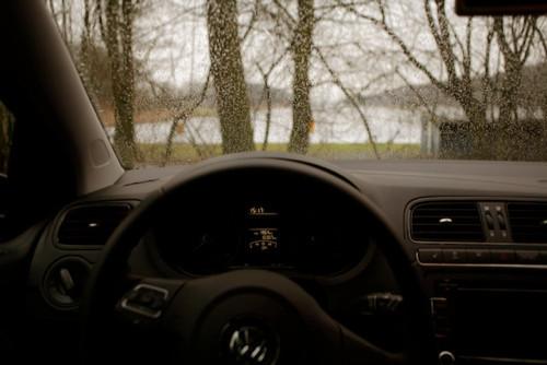 Изображение 36. Амстердамский лес и городские окна.. Изображение № 18.