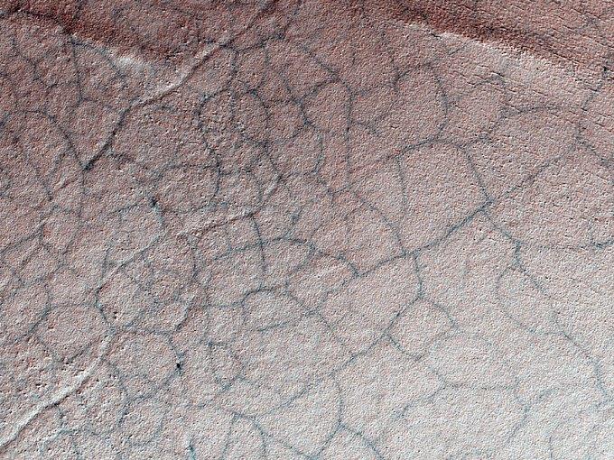 Линии, появившиеся в результате расширения и сжатия земли при нагревании. Изображение № 2.
