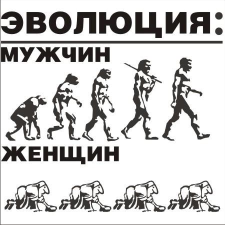 Эволюция июмор. Изображение № 11.