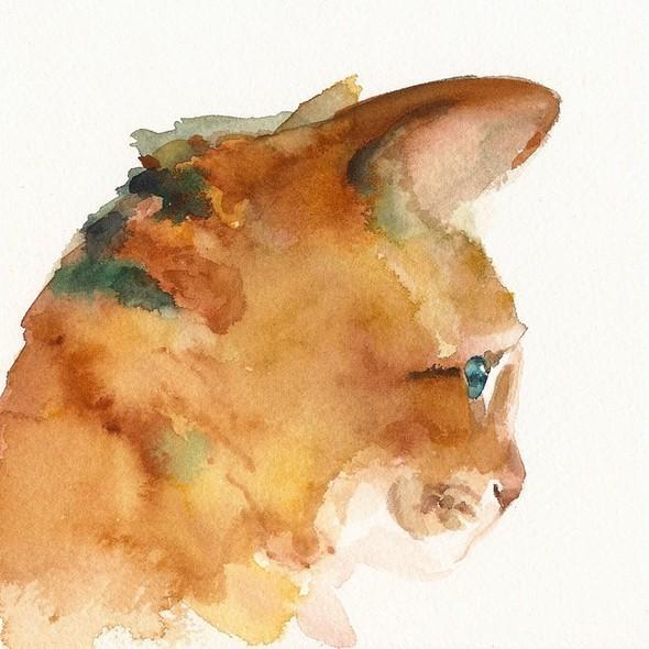 Изображение 12. Amber Alexander - животные, сияющие акварелью.. Изображение № 12.