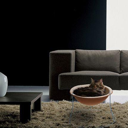 Hi-tech райдля кота. Изображение № 2.