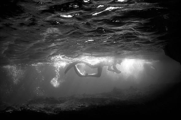 Подводная жизнь глазами фотографа Карлоса Франко. Изображение № 3.