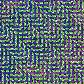 Animal collective – Merriweather Post Pavillon[2009]. Изображение № 2.