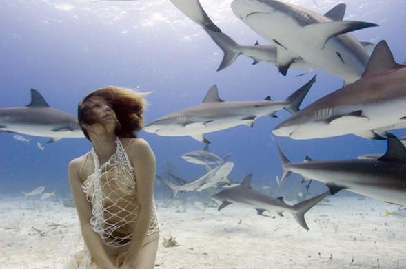 Todd Essick. Подводный мир. Изображение № 15.