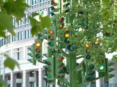Дерево-светофор. Изображение № 1.