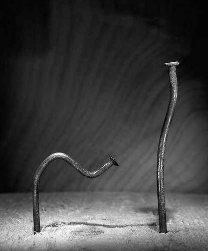 Жизненная история гвоздей. Изображение № 16.