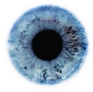 Фотограф Rankin — Eyescapes. Изображение № 7.