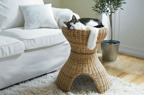 IKEA - интерьер для котов. Изображение № 32.