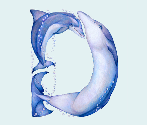 Животный алфавит. Изображение № 10.