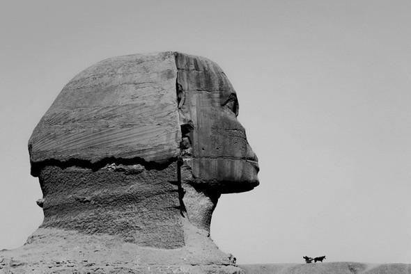 Черно-белые путешествия. Изображение № 115.