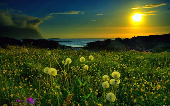 Весна идет! Создаем весеннее настроение. Изображение № 19.