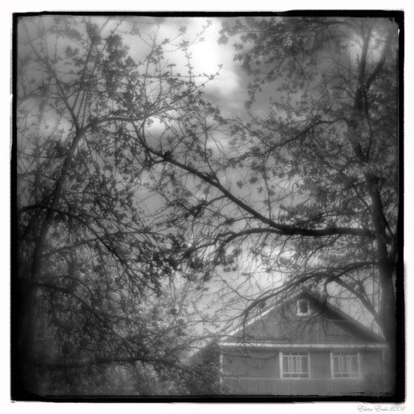 Окна впараллельный мир. Изображение № 3.