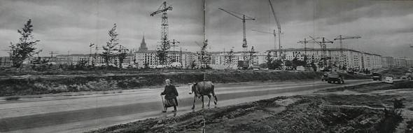 Erich Einhorn. Москва 1959. Изображение № 1.