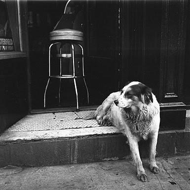 Жизнь в забвении: Фотографы, которые прославились после смерти. Изображение №187.