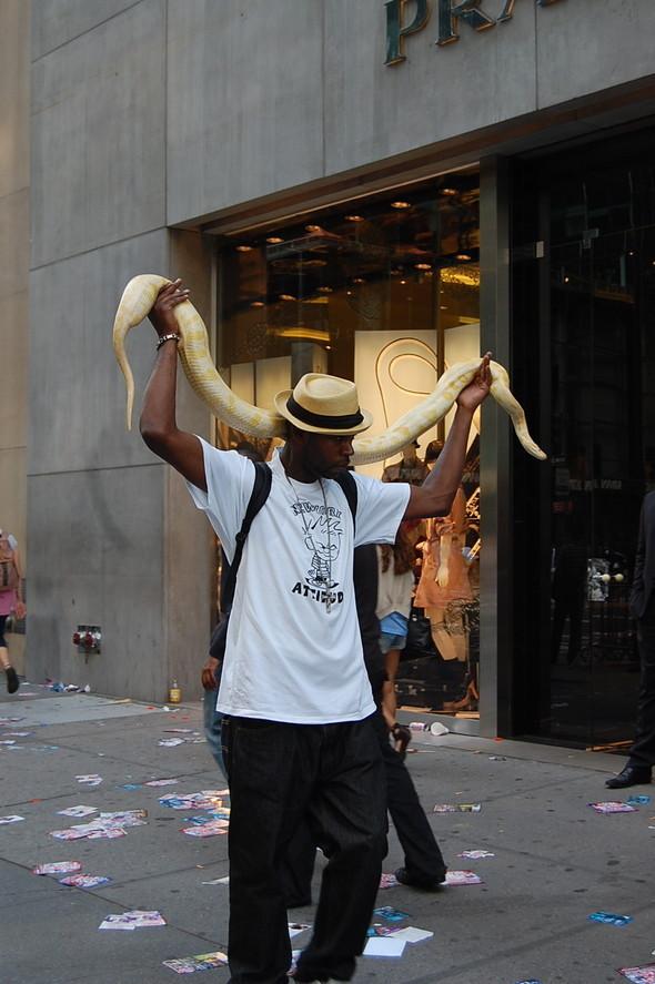 Люди Нью-Йорка. Изображение № 24.