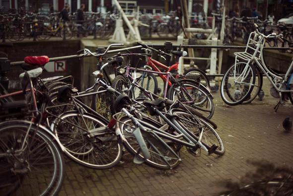 Амстердам. Изображение № 6.