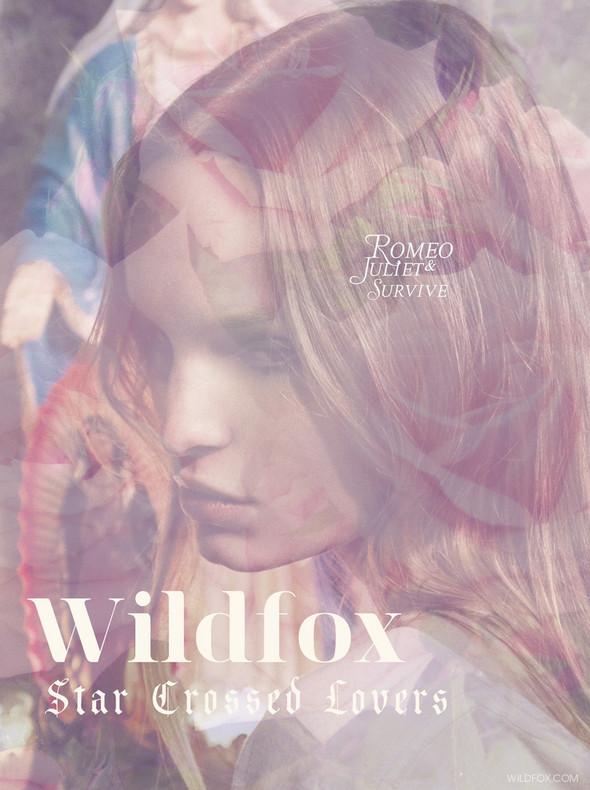 Лукбуки: COS, Wildfox, Massimo Dutti и другие. Изображение № 1.
