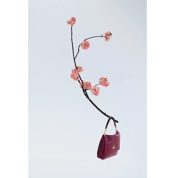 Изображение 15. Лукбук: Loewe Cherry Blossom.. Изображение № 15.