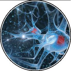 10 примеров биохакинга, которые изменят нашу жизнь. Изображение № 6.