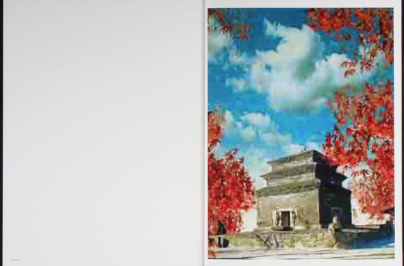 7 альбомов об абстрактной фотографии. Изображение № 78.