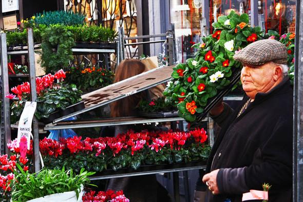 Columbia Road Flower Market/Цветочный рай. Изображение № 7.
