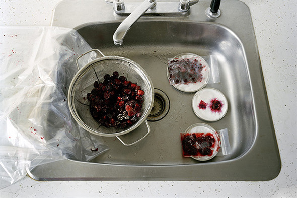 Фотография Kathryn Parker Almanas. «Неманипулированный» still life, в котором автор сознательно показывает естественность картинки. Изображение № 21.
