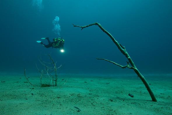 Фотограф Herbert Meyrl. Скамейки под водой. Изображение № 3.
