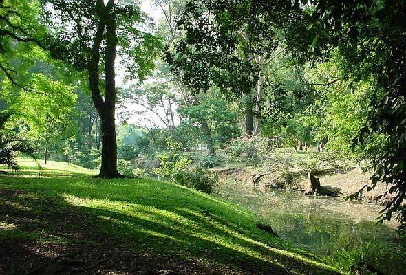 Изображение 18. 7 лучших городских парков мира.. Изображение № 32.