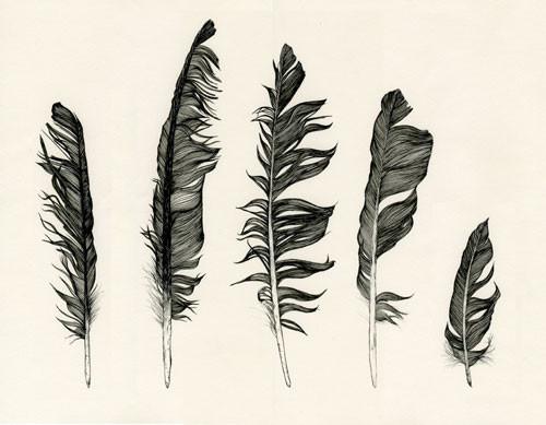 Birds Of Claire. Изображение № 10.