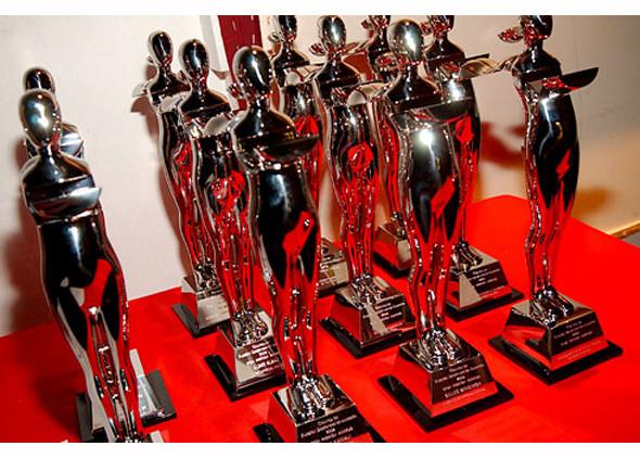Как стать звездой: 7 модных наград. Изображение № 8.