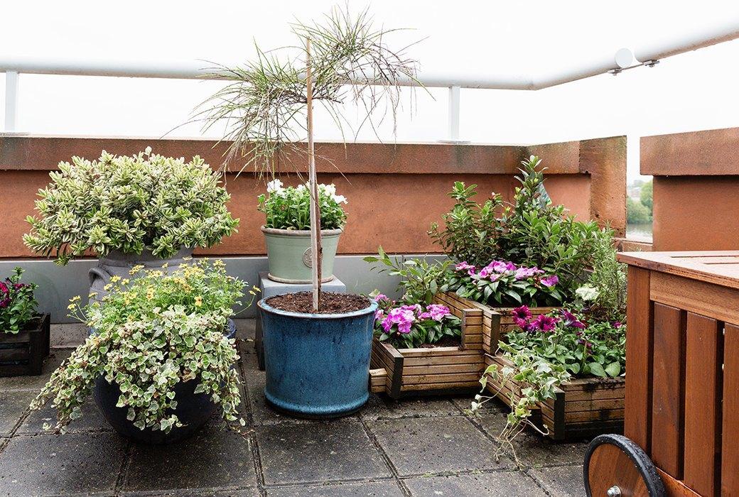 Просторный «зеленый» офис лондонского агентства Flamingo. Изображение № 8.