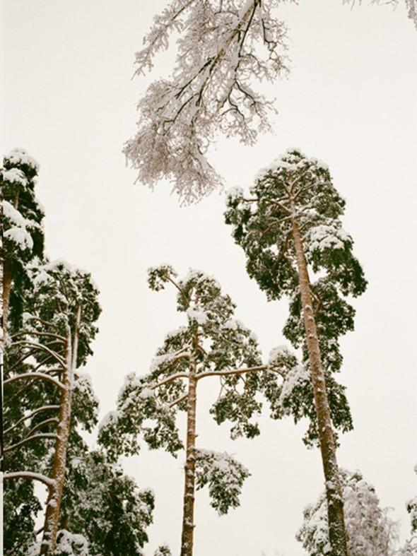 Лукбук: Asya Malbershtein 2012. Изображение № 21.