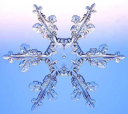 Снежинки – временные произведения искусства. Изображение № 2.