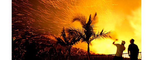 Новое имя: Palms on Fire. Изображение № 1.
