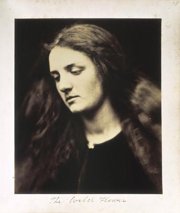 История фотографии: Джулия Маргарет Кэмерон. Изображение № 26.
