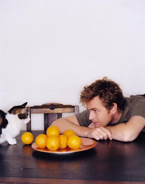Коты и их знаменитости. Изображение № 9.