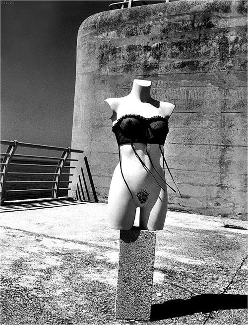 Helmut Newton-гурман женской плоти. Изображение № 24.
