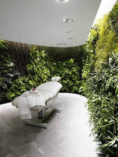 Диалог с природой: вертикальные сады. Изображение № 6.