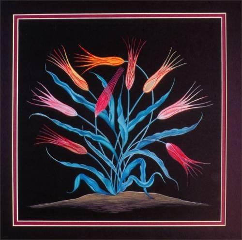 Эбру: рисунки на воде. Изображение № 2.