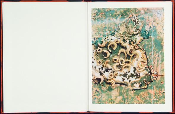 7 альбомов об абстрактной фотографии. Изображение № 62.