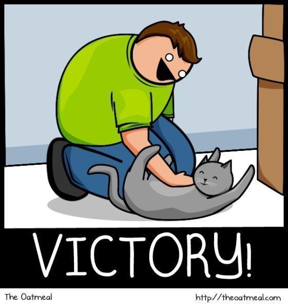 Cat vs. Internet. Изображение № 21.