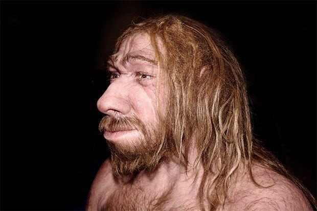 Неандертальцы могли вымереть из-за пренебрежения огнём. Изображение № 1.