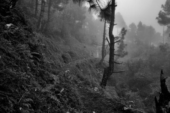 Фотоэкзотика: Фотографии из необычных путешествий. Изображение № 60.